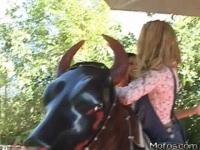 Ride That Bull!!!